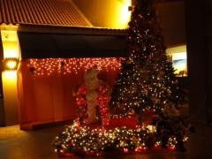 Christmas in Aruba