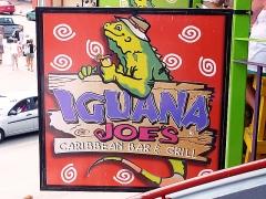 Iguana Joes
