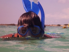 Snorkeler Pam