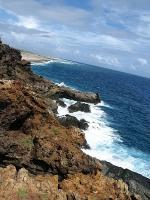 Southern Coast of Aruba