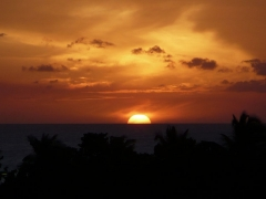 Aruban Sunset
