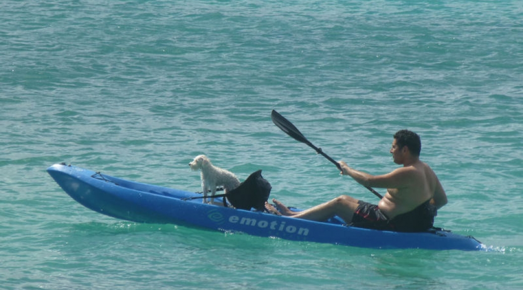 Kayaking buddies