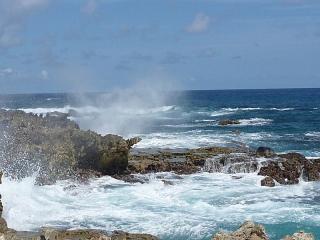 East coast waves