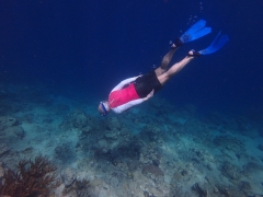 Maurice diving in Blue Bay
