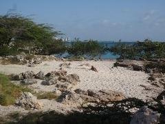 The first beach in Aruba