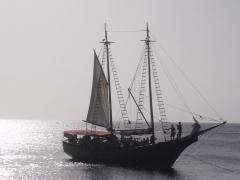 Pelican sailing ship